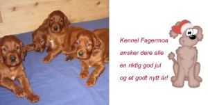 God Jul Fagermoa